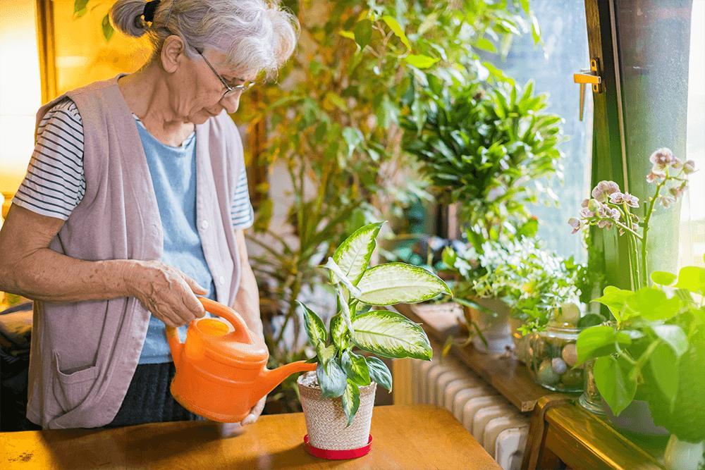 indoor-gardening-joint-pain