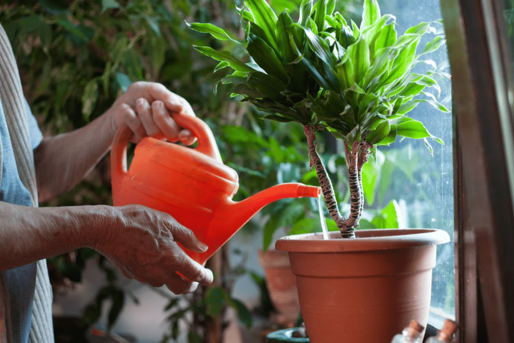 6 Joint Health Friendly Hobbies for At Home 1
